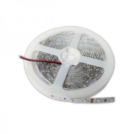 Banda LED Profesionala 2835 20W/m - Ledel
